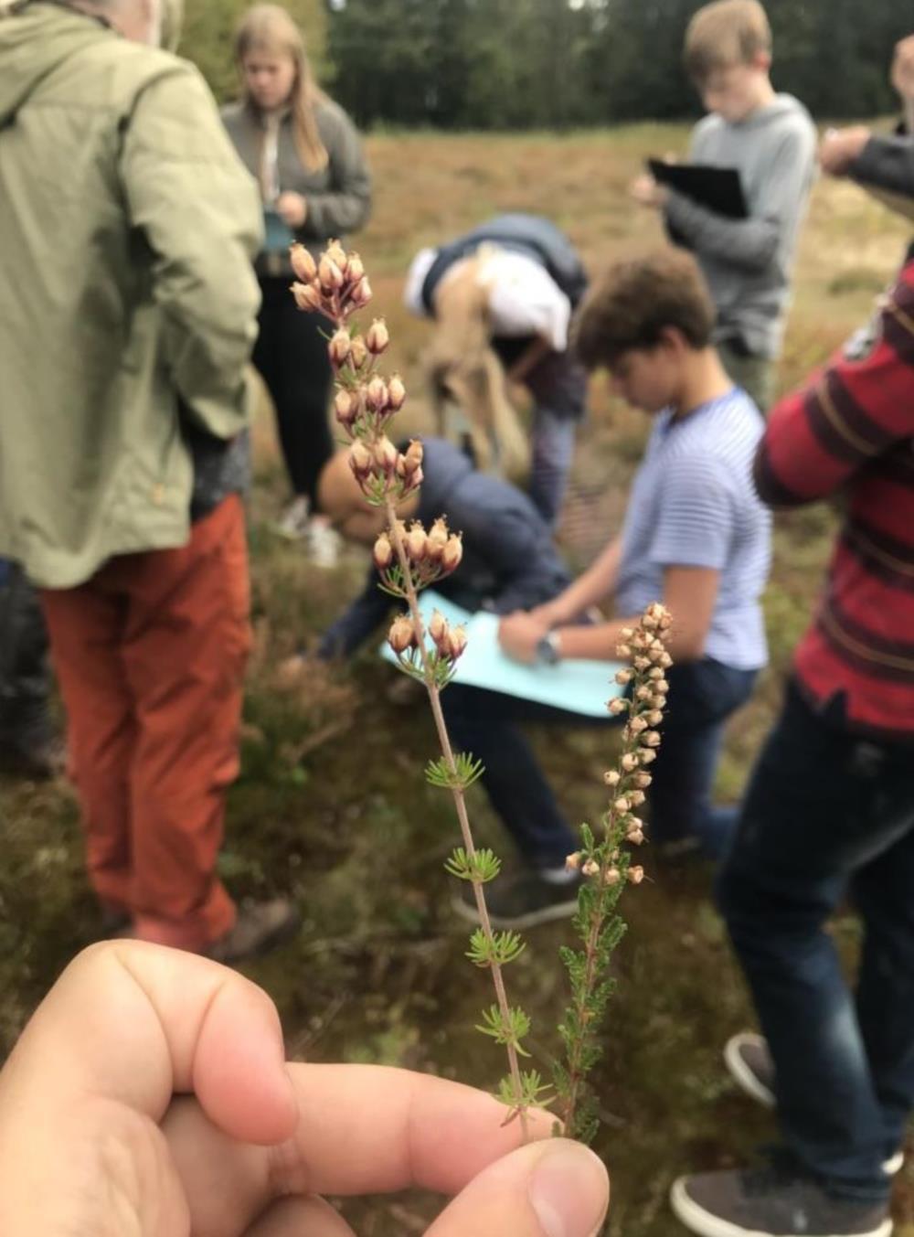 Excursie Terreinstudie + Ecologie (4WET)